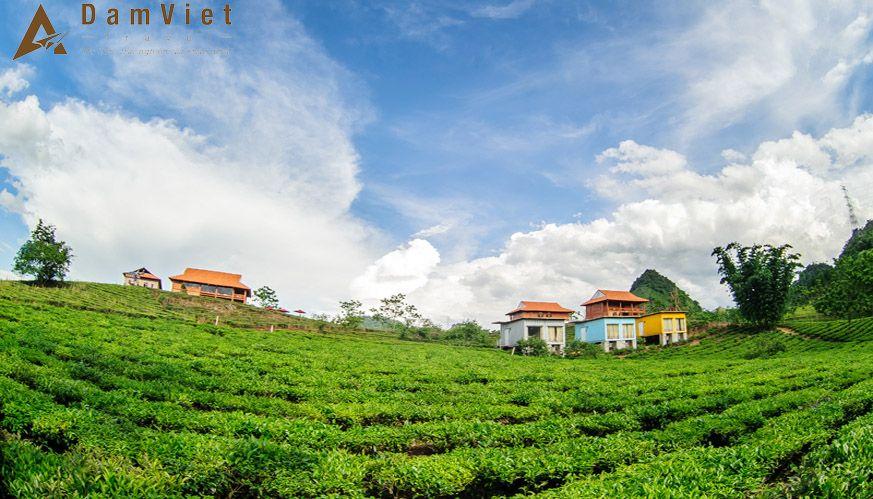 Du lịch Mộc Châu Arena Village