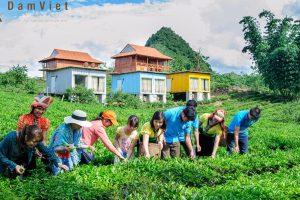Khám phá Mộc Châu Arena Village