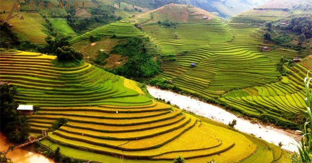 Du lịch Mù Cang Chải – Tú Lệ – Nghĩa Lộ