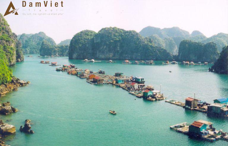 Vịnh Lan Hạ ở Hạ Long