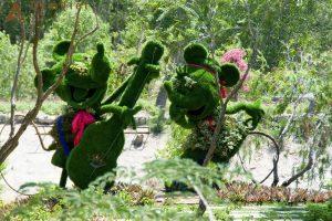 Du ngoạn Vịnh Nha Phu– Khám phá đảo Khỉ, đảo Hoa Lan