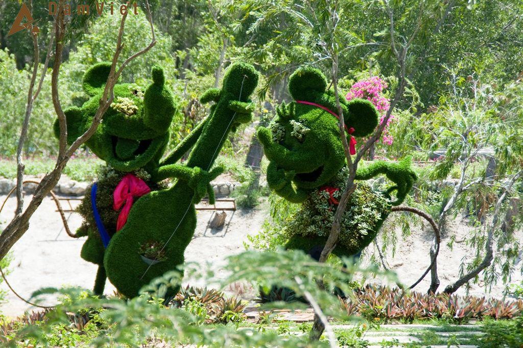 cây bonsai trên đảo Hoa Lan