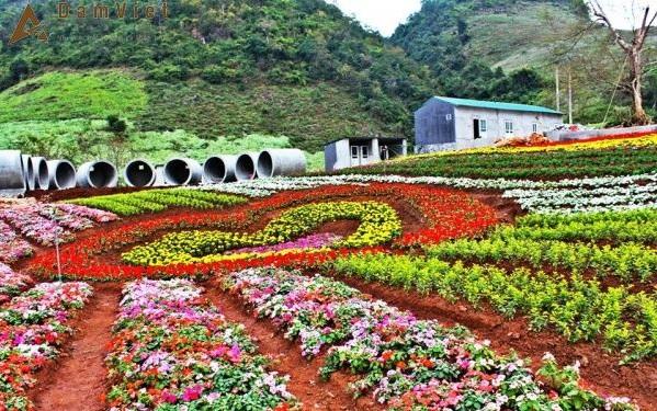 Khu du lịch Mộc Châu Happy Land: