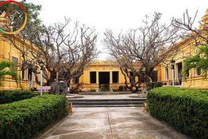 Gợi ý lịch trình du lịch Đà Nẵng 1 ngày