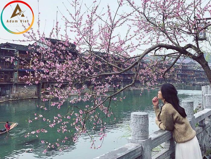 Du lịch Phượng Hoàng Cổ Trấn mùa xuân