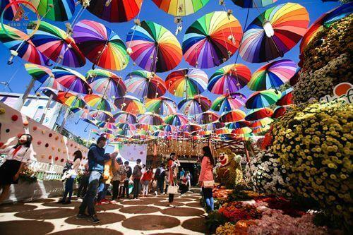 Festival hoa ở Đà Lạt