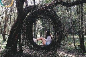 """Du lịch Đà Lạt – khám phá khu vườn thần tiên với """"xích đu tổ chim"""" độc đáo"""