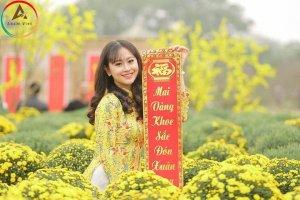 Hot – Cánh đồng Cúc Mâm Xôi tuyệt đẹp lần đầu tiên có mặt tại Hà Nội