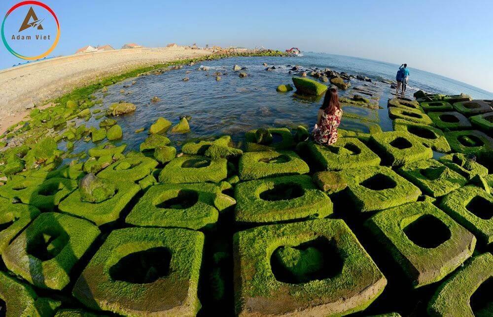 Thiên đường rêu xanh ở Phú Yên